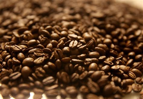 Meet the genes in the beans of your coffee - LA Times