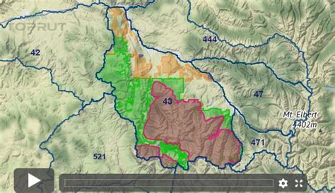 Colorado Elk - Unit 43 - Draw Odds, Tag Information and More